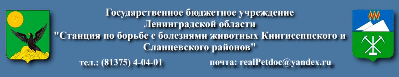 ГБУ ЛО «СББЖ Кингисеппского и Сланцевского районов»